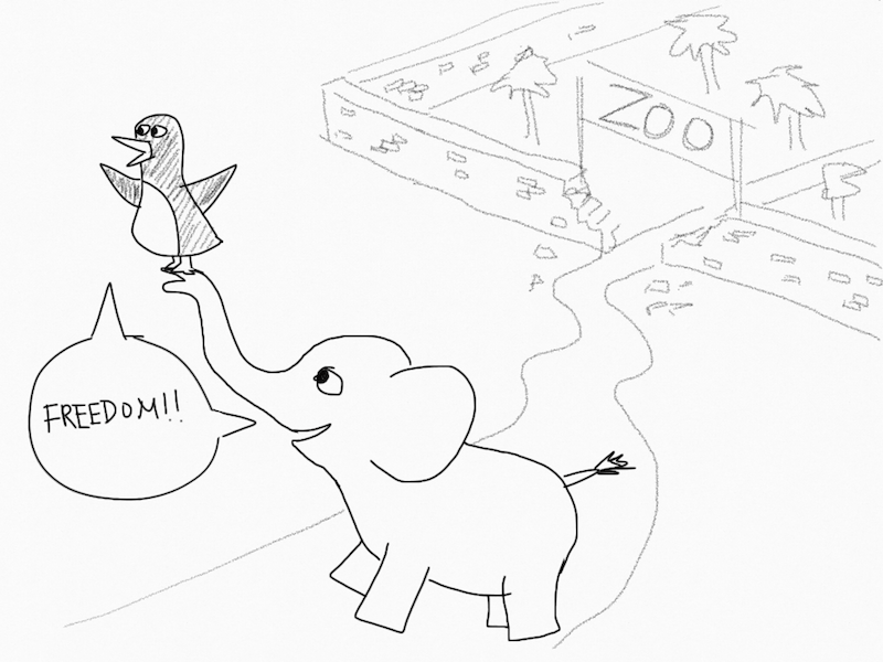 An elephant breaking out of the zoo with a penguin!